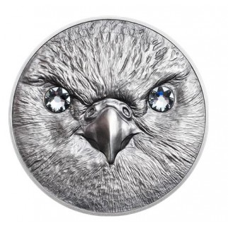 1 Unze Silber American Eagle 2016 (Deep Frozen Edition)