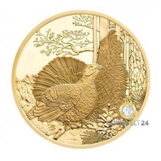 100€ Wildtiere Österreich 2015