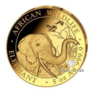 5 Unzen Gold Somalia Elefant 2018 PP