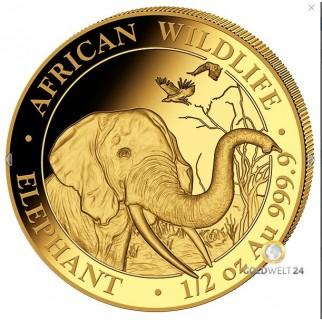 1/2 Unze Gold Somalia Elefant 2018