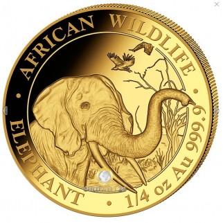 1/10 oz - 1 oz Gold Somalia Elefant Prestige Set 2018 PP
