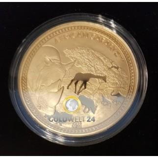 1 Unze African Safari Gold Nashorn 2018 PP