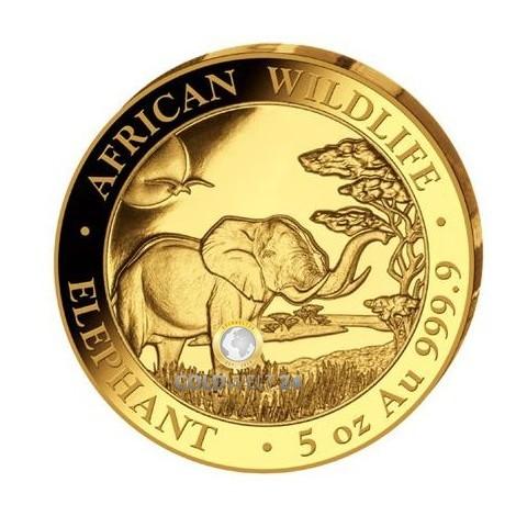 5 Unzen Gold Somalia Elefant 2019 PP