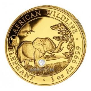 1 Unze Gold Somalia Elefant Privy Schwein 2019