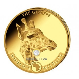 1/10 oz - 1 oz Gold Worlds Wildlife Prestige Set 2019 PP (Giraffe)