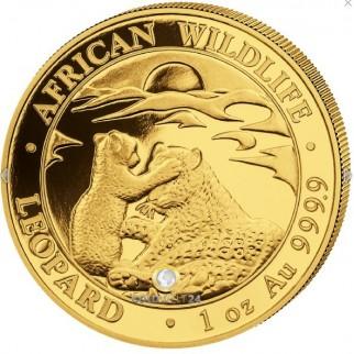 1 Unze Gold Somalia Leopard 2019
