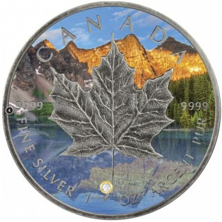 1 Unze Silber Maple Leaf Four Seasons Summer Antik Finish