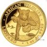 1 Unze Gold Somalia Leopard 2020