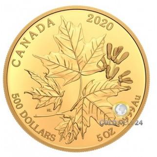 5 Unzen Gold Maple Leaf 2020 PP