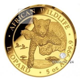 5 Unzen Gold Somalia Leopard 2020