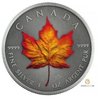 1 Unze Silber Maple Leaf Four Seasons Autumn Antik Finish 2020