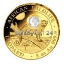 5 Unzen Gold Somalia Leopard 2021