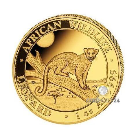1 Unze Gold Somalia Leopard 2021