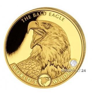 1/10 oz - 1 oz Gold Worlds Wildlife Prestige Set 2021 PP (Bald Eagle
