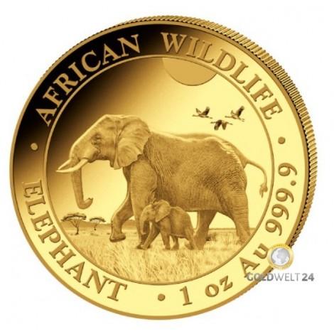 1 Unze Gold Somalia Elefant 2022