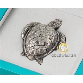 Sea Turtle 2017